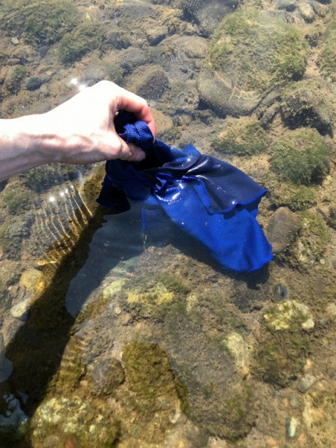 川の水でクールタオルを濡らす