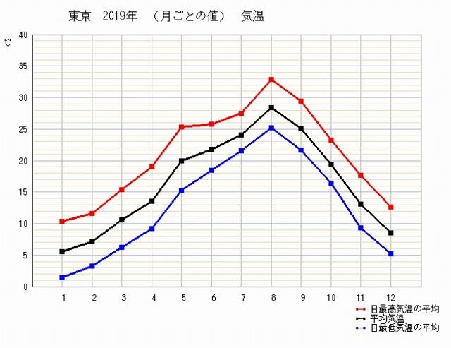 東京の年間最高気温